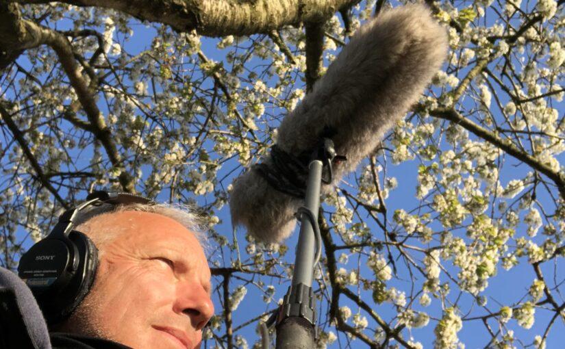 A Shropshire Symphony – spring